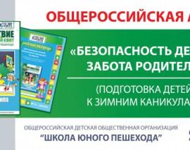Итоги Общероссийской акции «Безопасность детей – забота родителей» (подготовка детей к ЗИМНИМ каникулам)