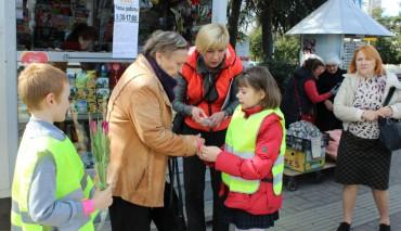 В Сочи прошла информационно-пропагандистская акция  «Безопасность пожилого человека на дороге»